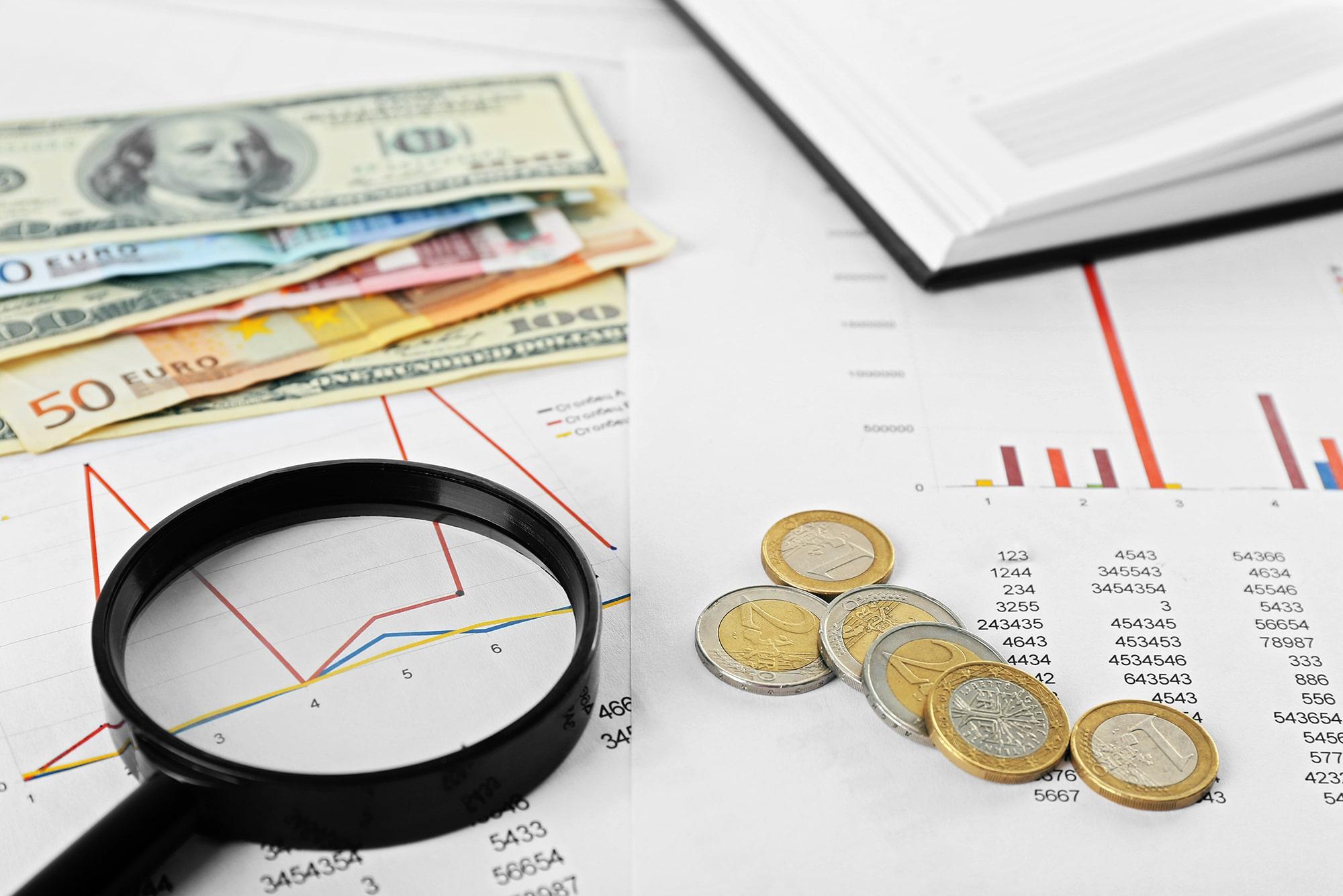 Minighid de tranzacționare valutară - Economie | Editura Publica